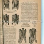 1892 Ladies Basque Fashion Illustrations
