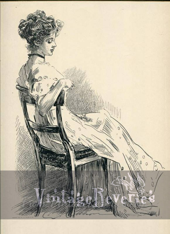 the wallflower gibson girl