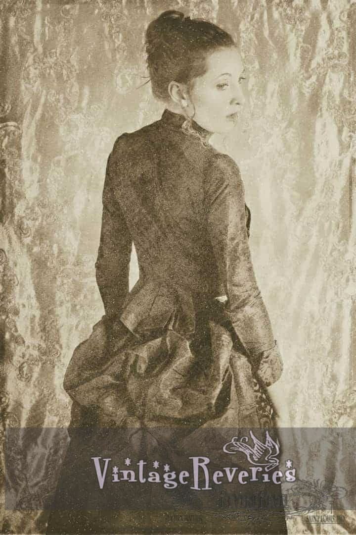 1880s dress 1880s dress bichromate effect